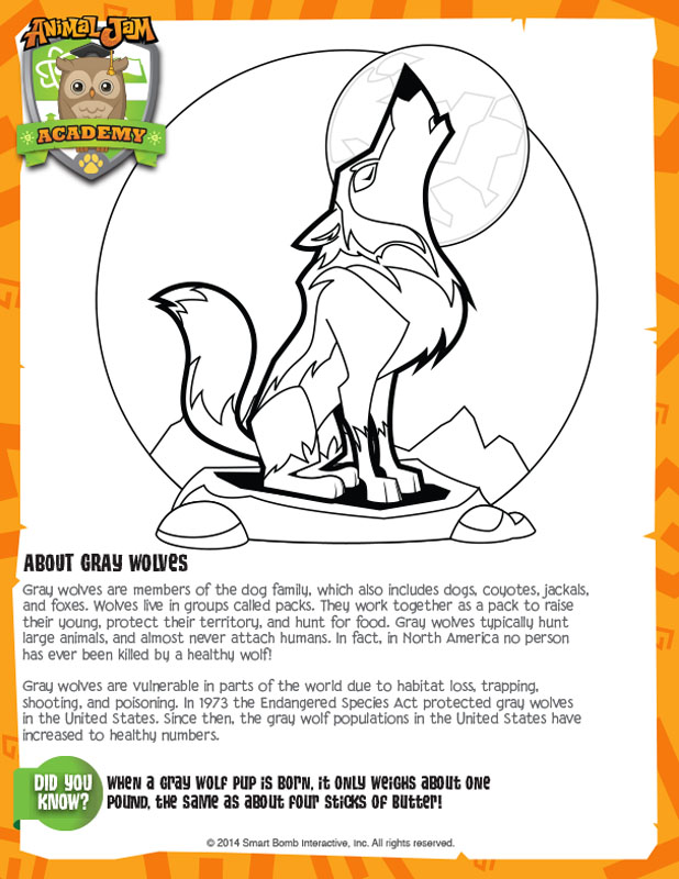 Coloring Pages Gray Wolf  Coloring Pages For Kids and All Ages