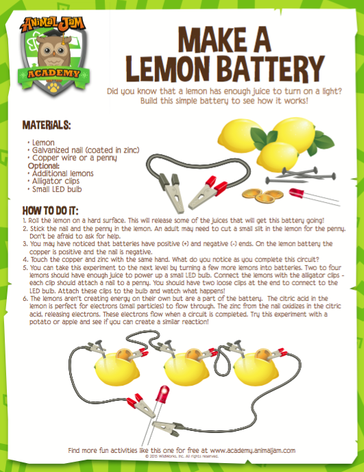 battery experiment paper Fruit battery research by: emmanuel okelloabstract what i am going to do in my experiment is that i will see how citrus fruit can make a li.